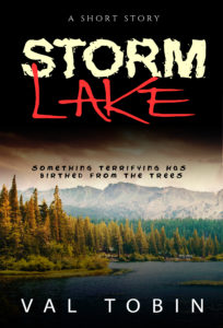 Val Tobin's current projects: Storm Lake sequel
