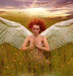 Angel in Field